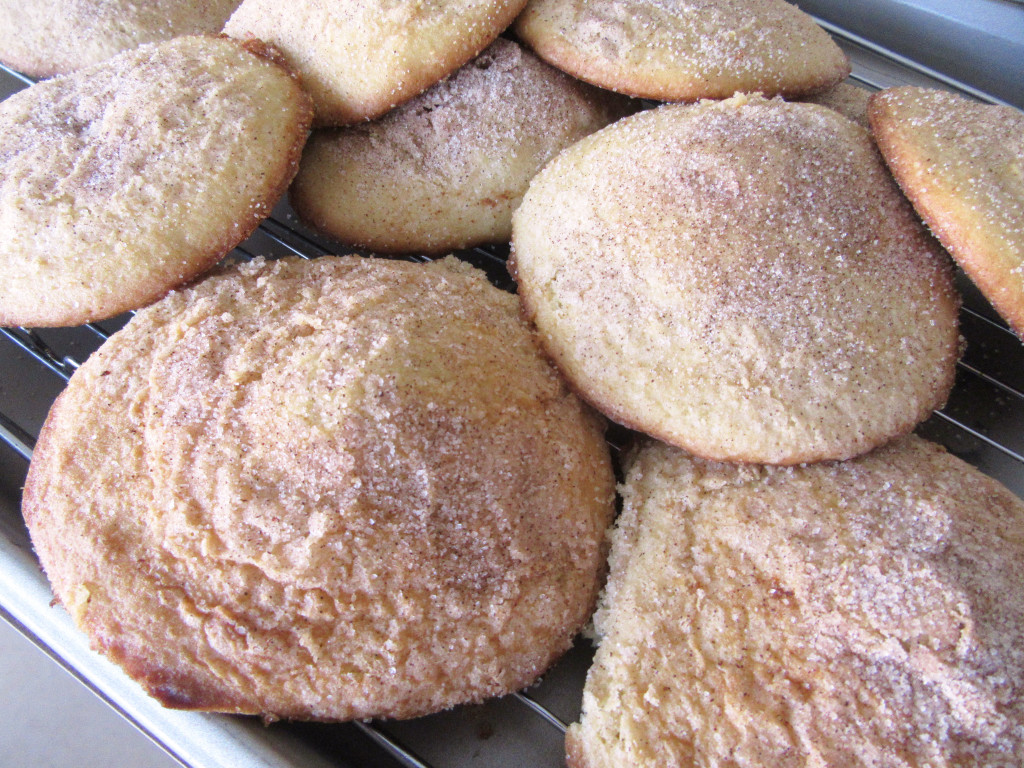 Amish Church Cookies