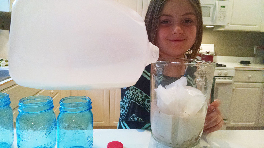 Laney's Breakfast Smoothie for Kids