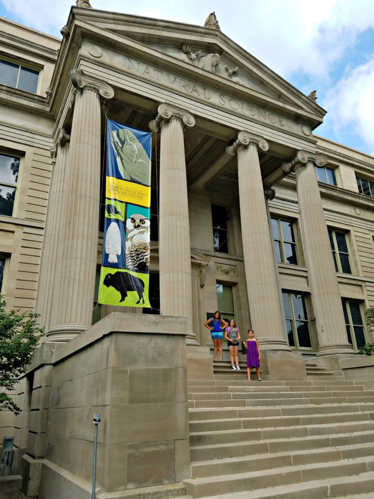 University Of Iowa Museum Of Natural History