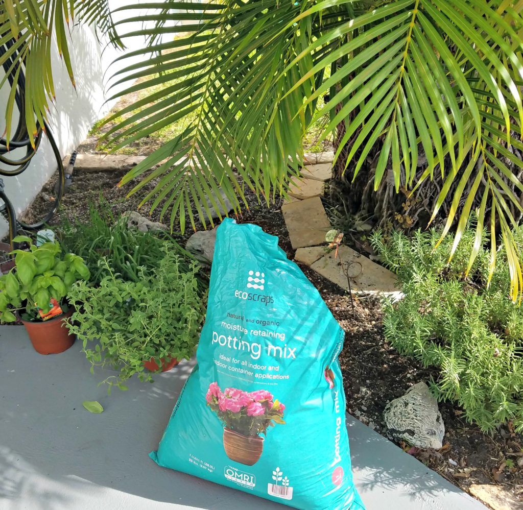 Meemaw's Tropical Herb Garden…A Work In Progress!