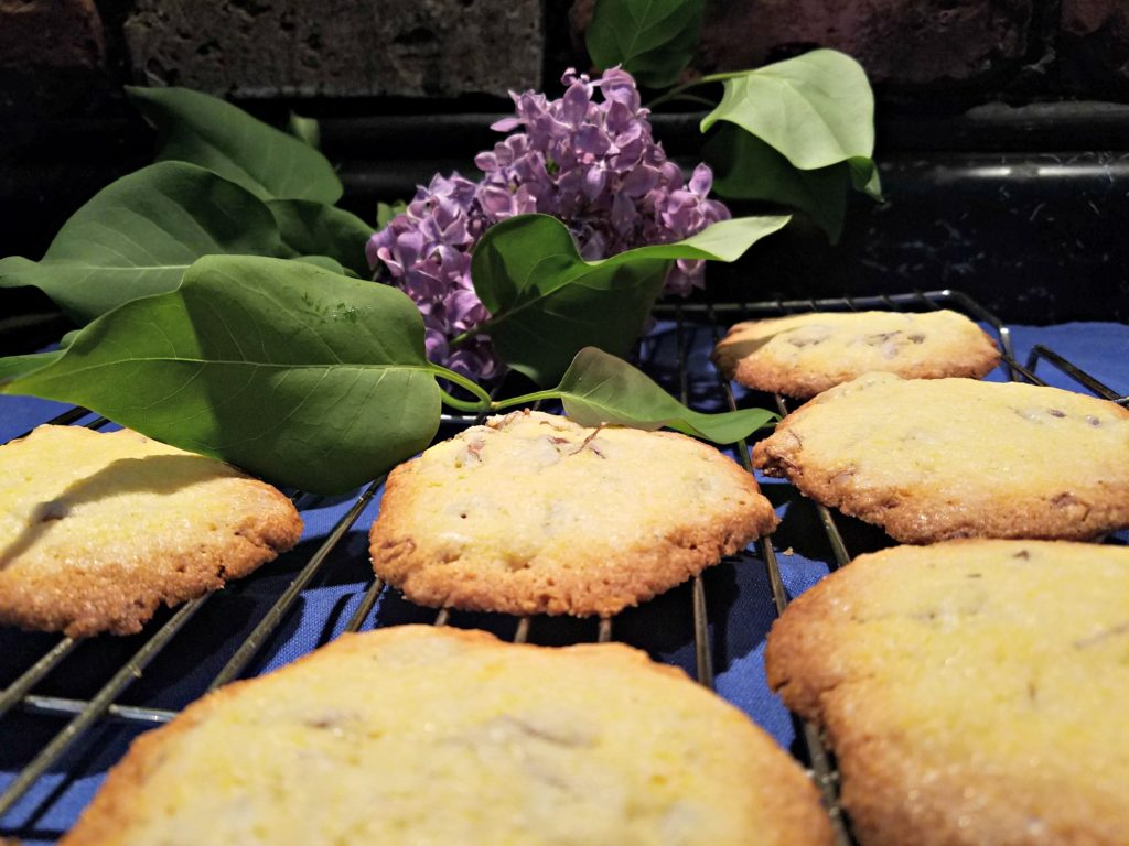 When Lilacs Bloom…Make Lilac Cornmeal Cookies! (These Cookies Are DELISH!)